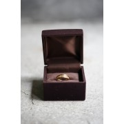 17SS PERMANENT LINE SURGICALSTAINLESS RING Q003-GOLD-17