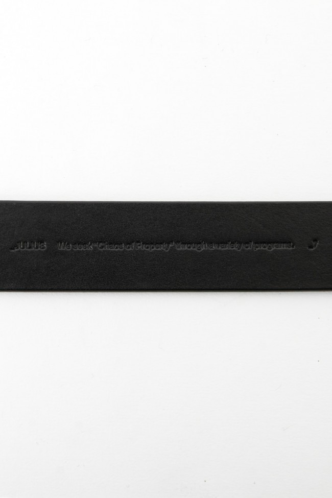 17SS Downwards Belt