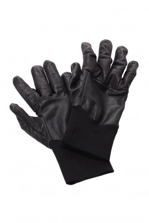 The Viridi-anne 20-21AW Glove