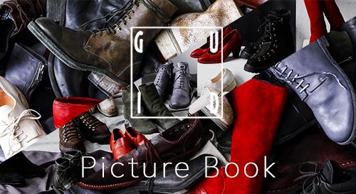 GUIDI picture book