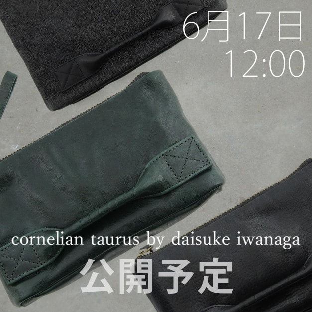 cornelian taurus 2018-19aw collection